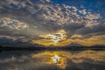 Sonnenuntergang am Hopfensee II - Ostallgäu von Christine Horn