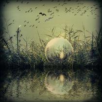In der Glaskugel - Mystische Au von Chris Berger