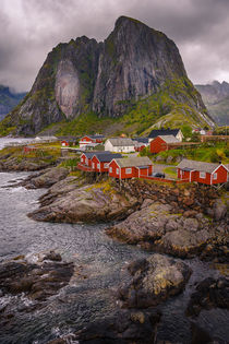 Best of Lofoten by Nuno Borges