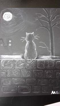 Katze im Mondlicht by ulrike0806