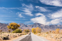 Autumn in the Eastern Sierra, CA, USA by Sandro S. Selig
