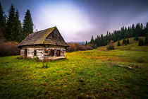 Old wooden house by Zoltan Duray