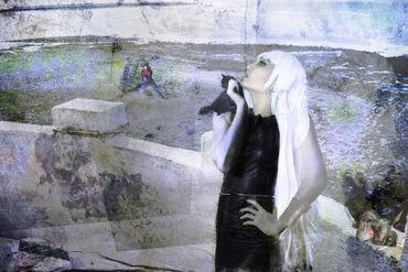 Kristinnorn-blackcat-7800x5200
