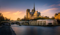 Notre Dame de Paris by Nuno Borges