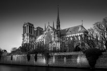 Notre Dame by Nuno Borges