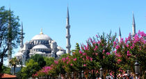 The blue mosque or Sultan Ahmed Mosque by ambasador