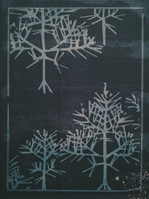 Crystal Snowflakes by Sybille Sterk