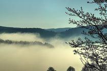 Nebel in einem Tal von Ralf Eckert