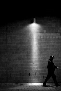 Durch das Licht gehen  von Bastian  Kienitz