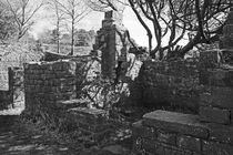 RIVINGTON. Terraced Garden Ruins.  von Lachlan Main