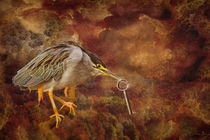 Der Schlüssel zum Wald by garrulus-glandarius