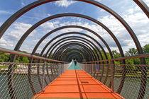 Slinky Springs To Fame (7-13993) von Franz Walter Photoart