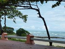 Republica Dominicana von klaus Gruber