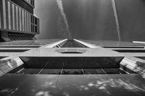 Skywards by Elisabeth  Lucas