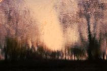 Herbstreflektionen von Bastian  Kienitz