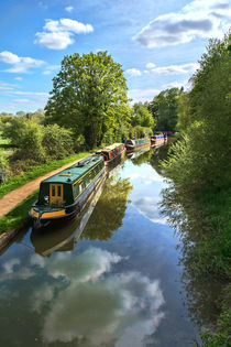 The Oxford Canal by Ian Lewis