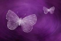 Delicate Butterflies Purple von Elisabeth  Lucas