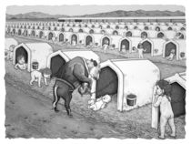 Dairy Baby Housing by Barbara Daniels Art