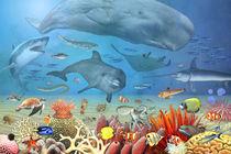 Wimmelbild_Tiere im Meer von Marion Krätschmer