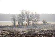 silent day... 2 von loewenherz-artwork