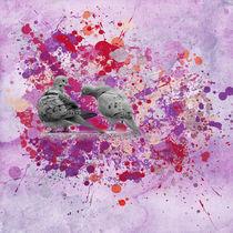 Sweet Love Birds von Elisabeth  Lucas