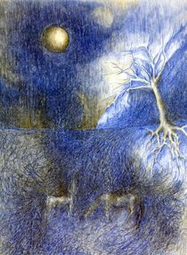 At night on the meadow by Wojtek Kowalski