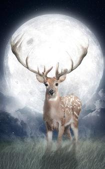 Midnight Deer by Marco Peters