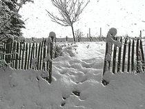 Winterimpressionen Baden Württemberg von wokli