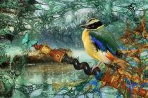 Der Farbenträumer by garrulus-glandarius