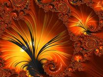 Fire Daydream by Elisabeth  Lucas