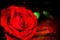 Burning love von Martina Marten