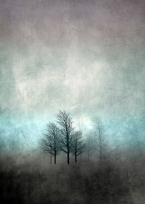 NOVEMBER FOREST COLORED MOODY von Pia Schneider