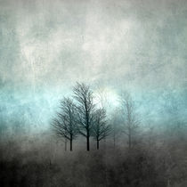 NOVEMBER FOREST COLORED MOODY-A by Pia Schneider