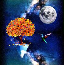 abstract universe  by Felix Van Zyl