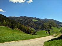 Österreichische Alpen von Andreas Merchel