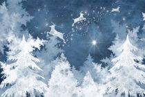 Winterluft von garrulus-glandarius
