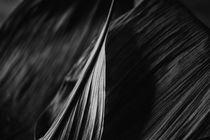 Linien by Petra Dreiling-Schewe