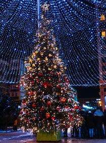 Merry Christmas  by Enache Armand Iustinian