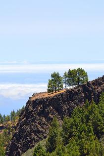 Gran Canaria von Sascha Stoll