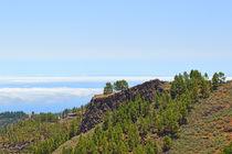 Gran Canaria by Sascha Stoll