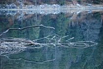 lakeside... 1 von loewenherz-artwork
