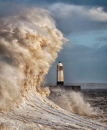 In the jaws of Hurricane Ophelia by Leighton Collins