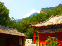 Chinese Natures by artificialprogress