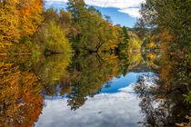 Goldener Herbst an der Zschopau von Stefan Weiß
