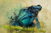 Poison blue frog von Jarek Blaminsky