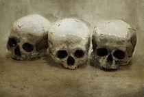 Three skulls von Jarek Blaminsky