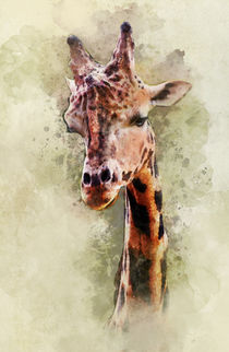 Pretty giraffe portrait von Jarek Blaminsky