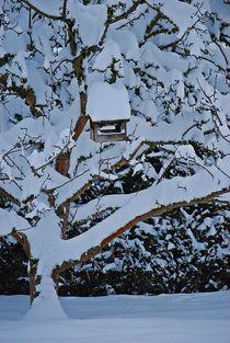 Apfelbaum mit Vogelhäuschen... 1 von loewenherz-artwork