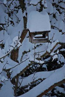 Apfelbaum mit Vogelhäuschen... 2 von loewenherz-artwork