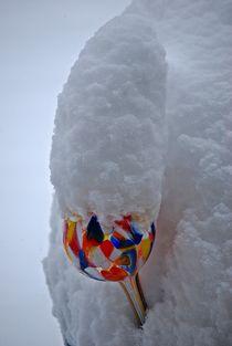 Winterstillleben... 1 von loewenherz-artwork